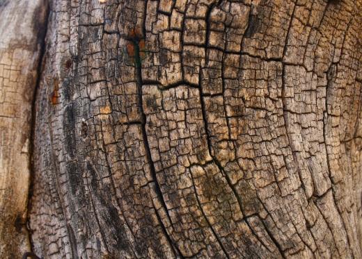 25-05-13_wood01
