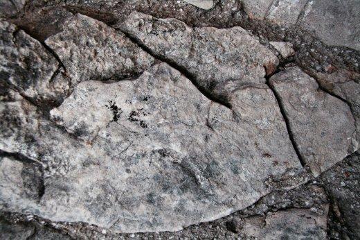 TextureFabrik-Stone_01