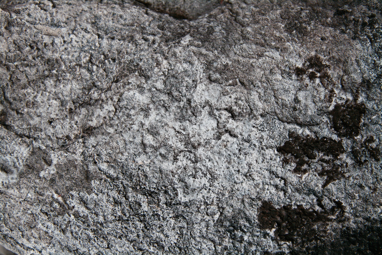 8 Stone Textures   Texture Fabrik