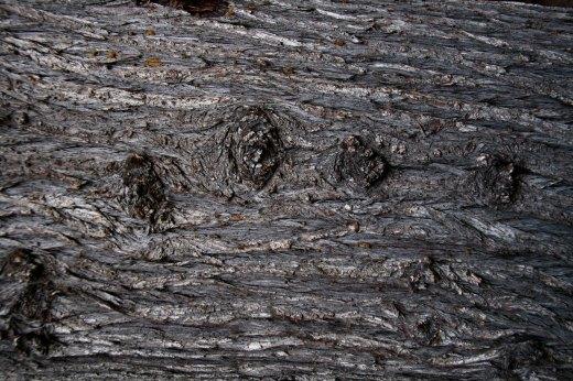 Wooden_Trunk_21