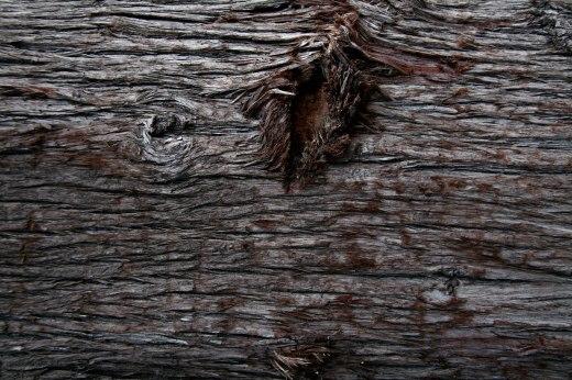 Wooden_Trunk_32