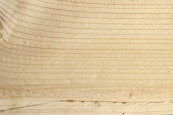 texturefabrik_Wood_Vol2_01