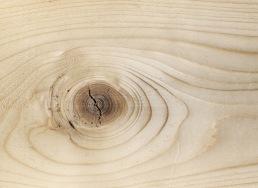 texturefabrik_Wood_Vol2_06
