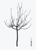 Texture Fabrik - Tree Vector Graphic