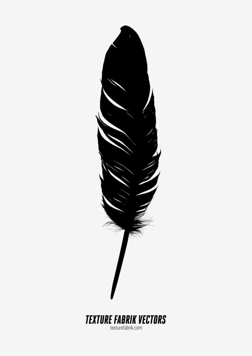 Detailed vector graphic of a black feather