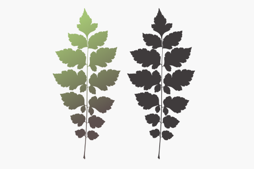 Minimal design of tree branch with leaves