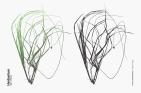 Texture Fabrik - Herbarium : Set 1